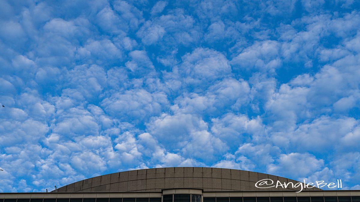 秋空 高積雲と愛知芸術文化センター