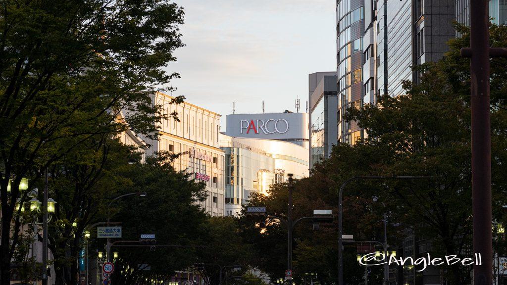 南大津通歩行者天国 夕景 Autumn 2019
