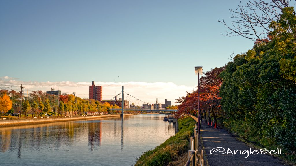 熱田西町西川並 旗屋橋付近から見る堀川