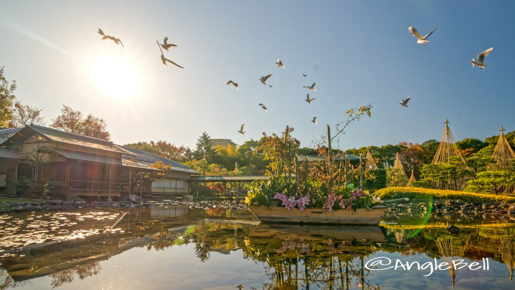 白鳥庭園 清羽亭と雪吊り 宮の渡し広場 (あかりアート ) 2019