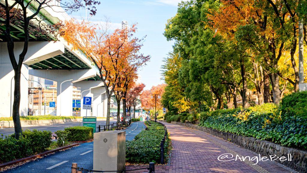 空港線 鶴舞中央図書館側の街路樹