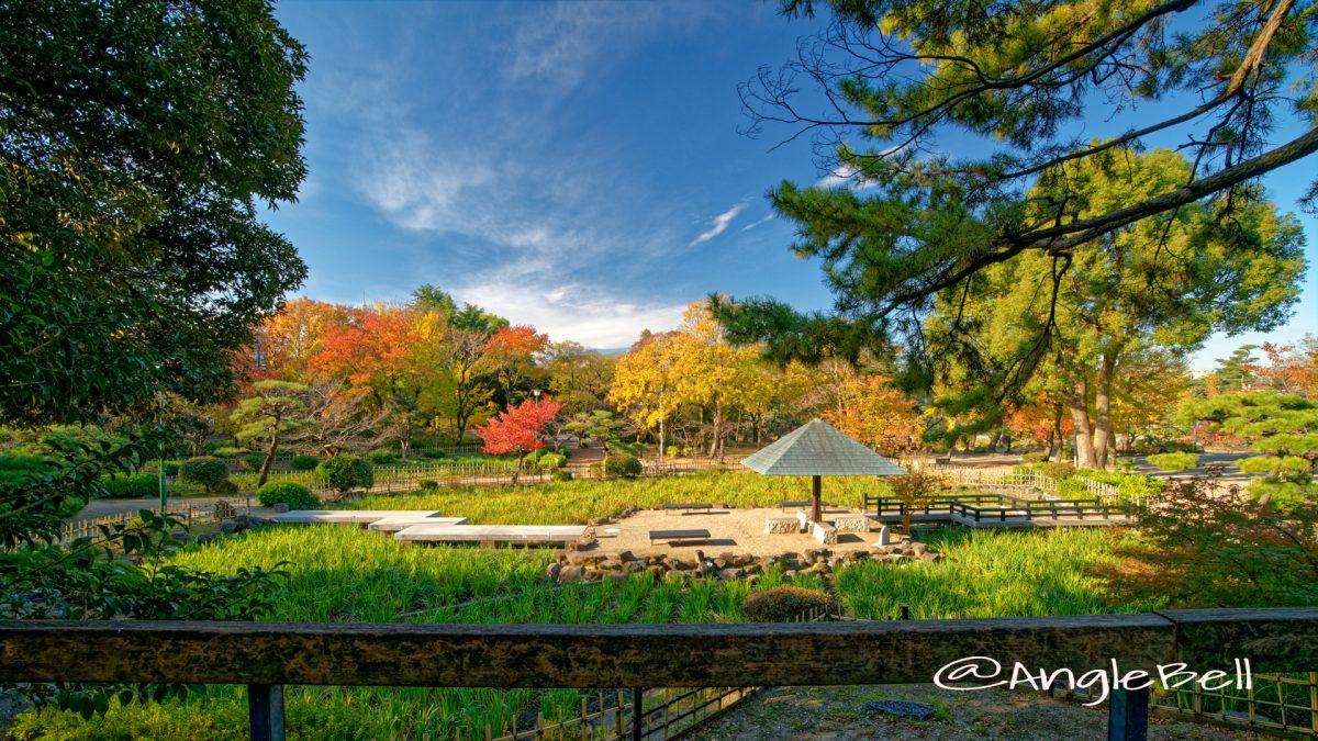 鶴舞公園 菖蒲池 全景 2019年秋