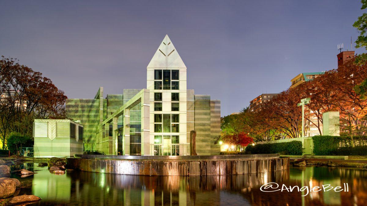 夜景 芸術と科学の杜 白川公園内 名古屋市美術館(南側)2019