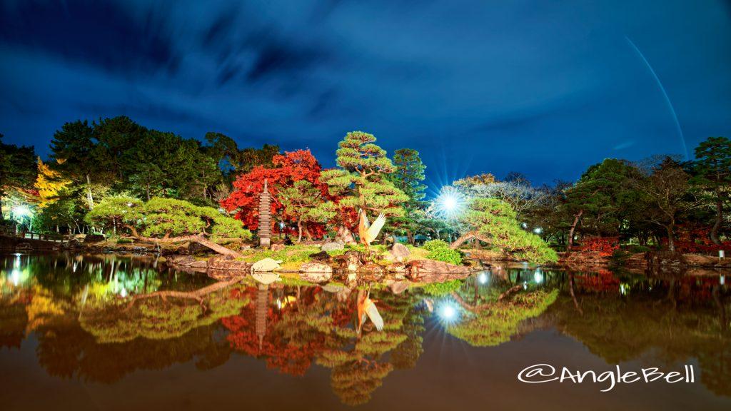夜景 鶴舞公園 胡蝶ヶ池 中ノ島 ( 鶴の噴水・巣ごもりの鶴・亀 )
