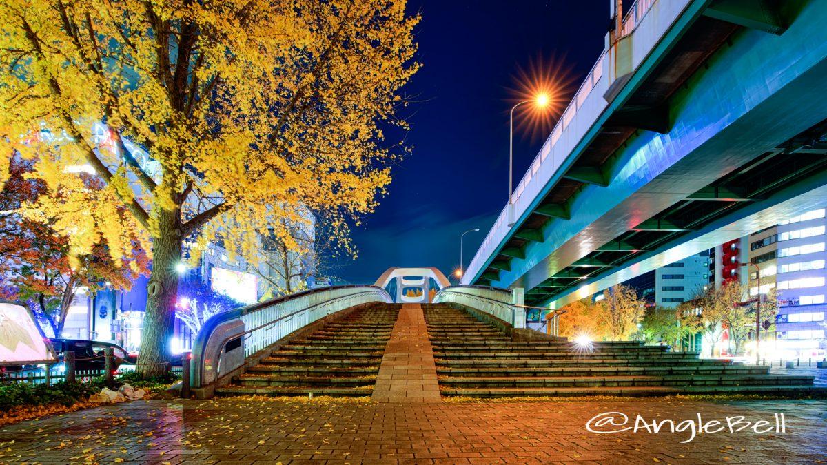 夜景 矢場ブリッジ (若宮大通公園 若宮広場)2019年冬