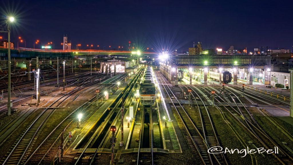 向野橋の上から見る名古屋車両区 夜景 2020