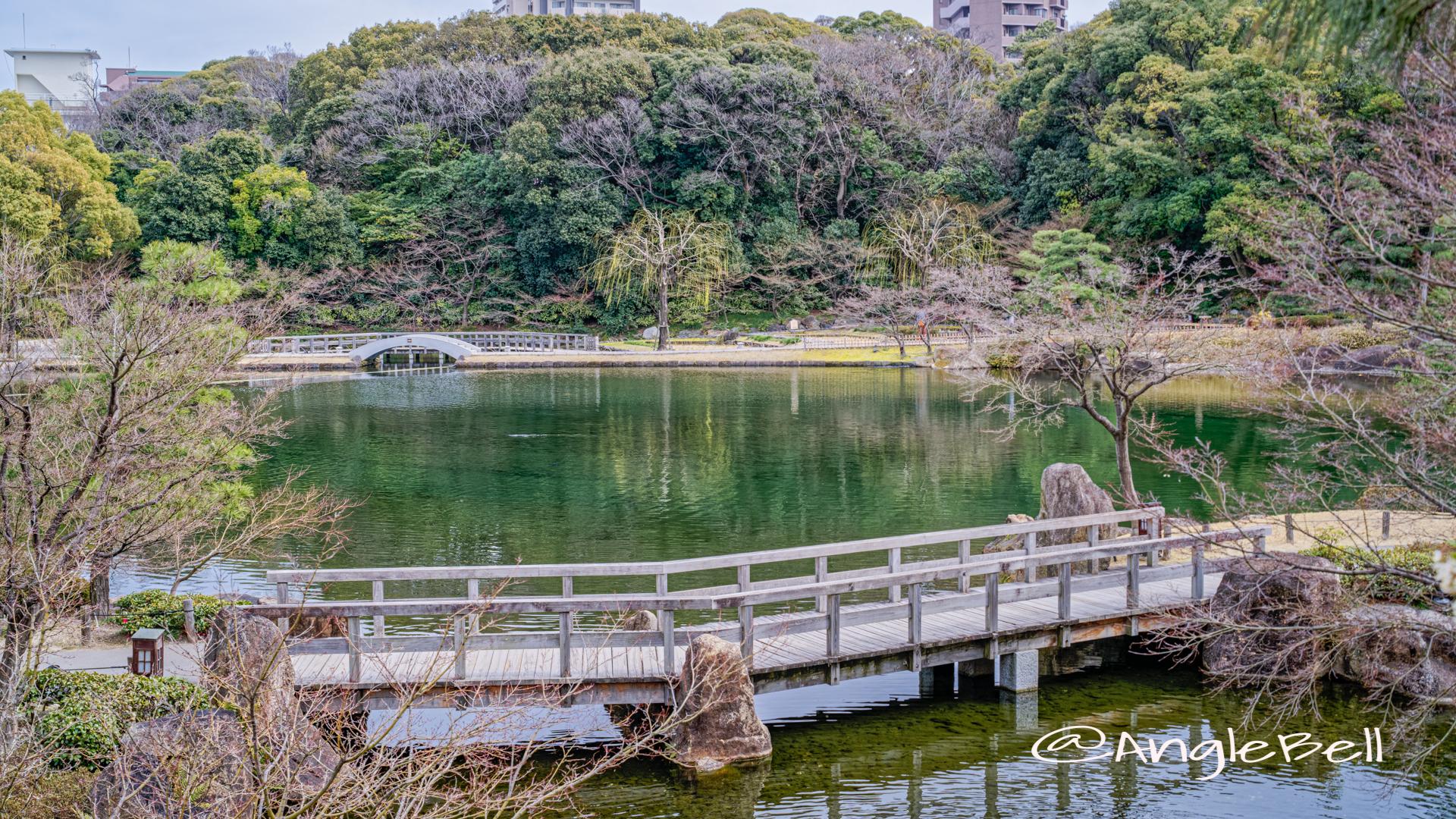 徳川園 瑞龍亭側から見る龍仙湖と太鼓橋