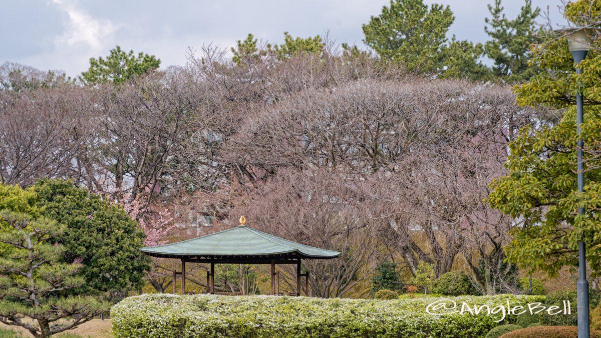 名古屋城 二之丸東庭園 四阿 March 2020