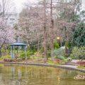 久屋大通庭園フラリエ ウォーターガーデン 春 2020