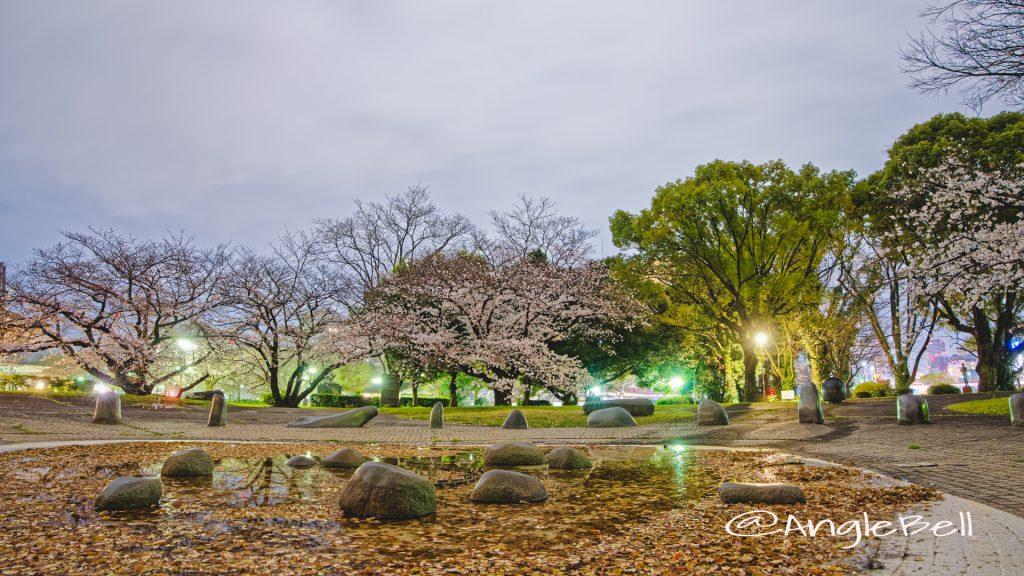 夜景 名城公園彫刻の庭 水広場 March 2020