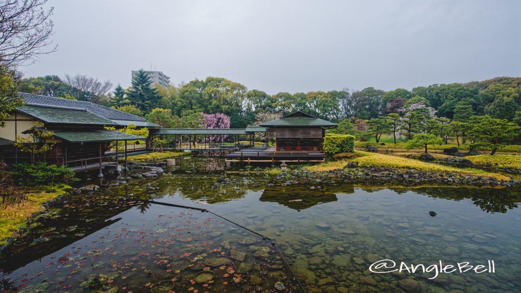雨天 白鳥庭園 清羽亭 March 2020