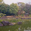 白鳥庭園 中の池 浮身四阿 March 2020