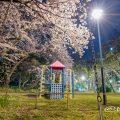夜景 名城公園 ライオンヘルスパーク ブランコから見た桜と滑り台 2020