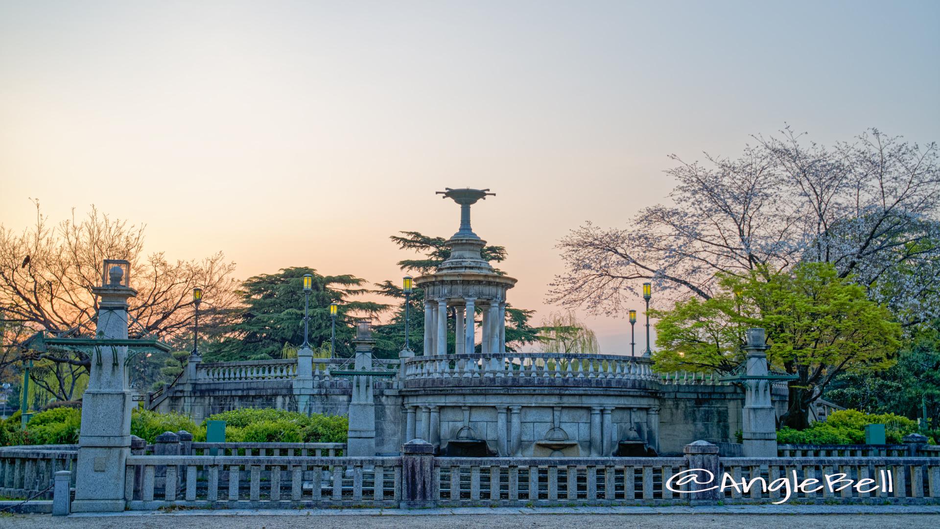 朝焼けの噴水塔と桜 (鶴舞公園) 2020年春
