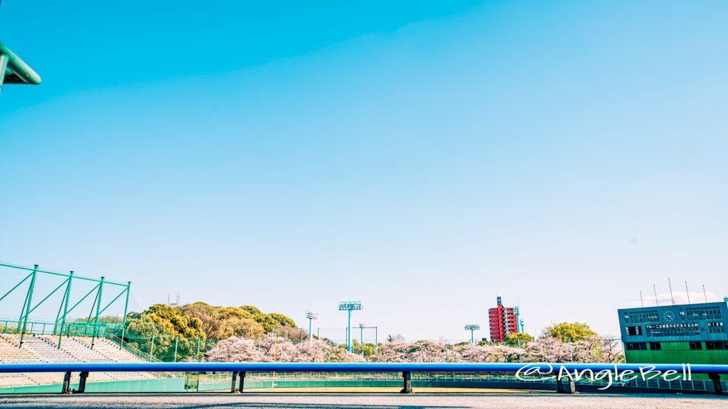 熱田愛知時計120スタジアム (熱田神宮公園野球場) 2020年春