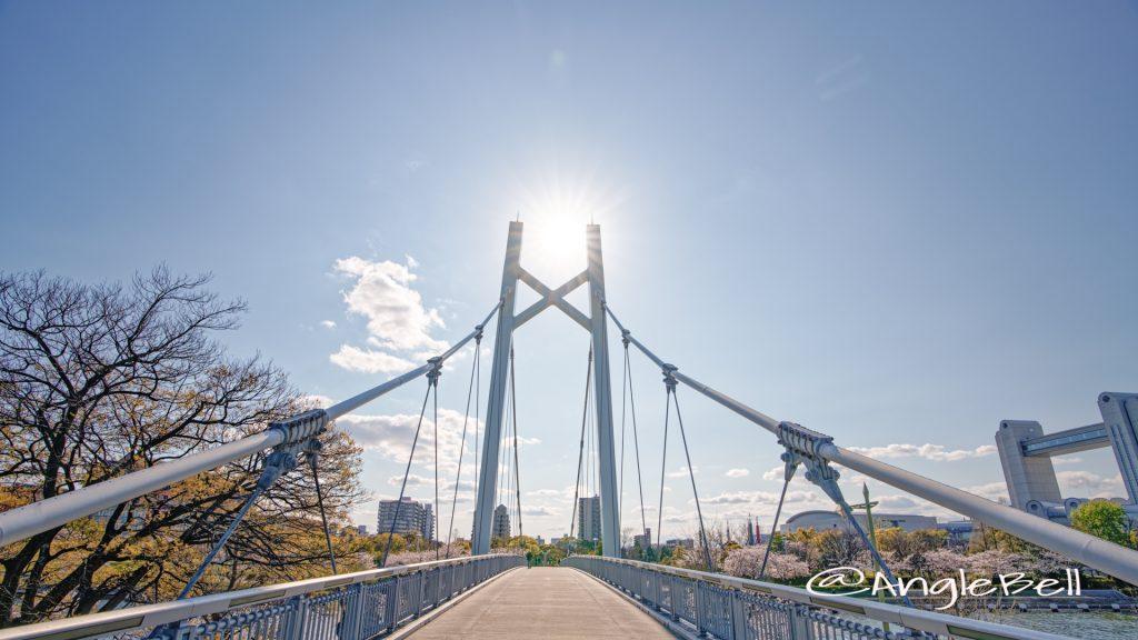 熱田神宮公園野球場側から見る熱田記念橋 と桜 2020年春