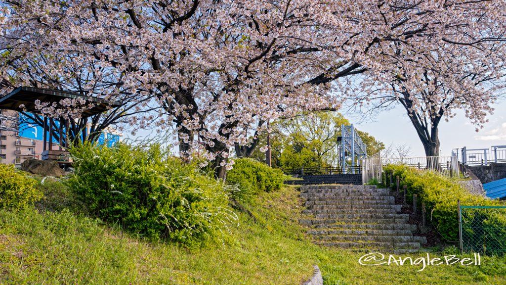 熱田区白鳥 堀川端公園 April 2020