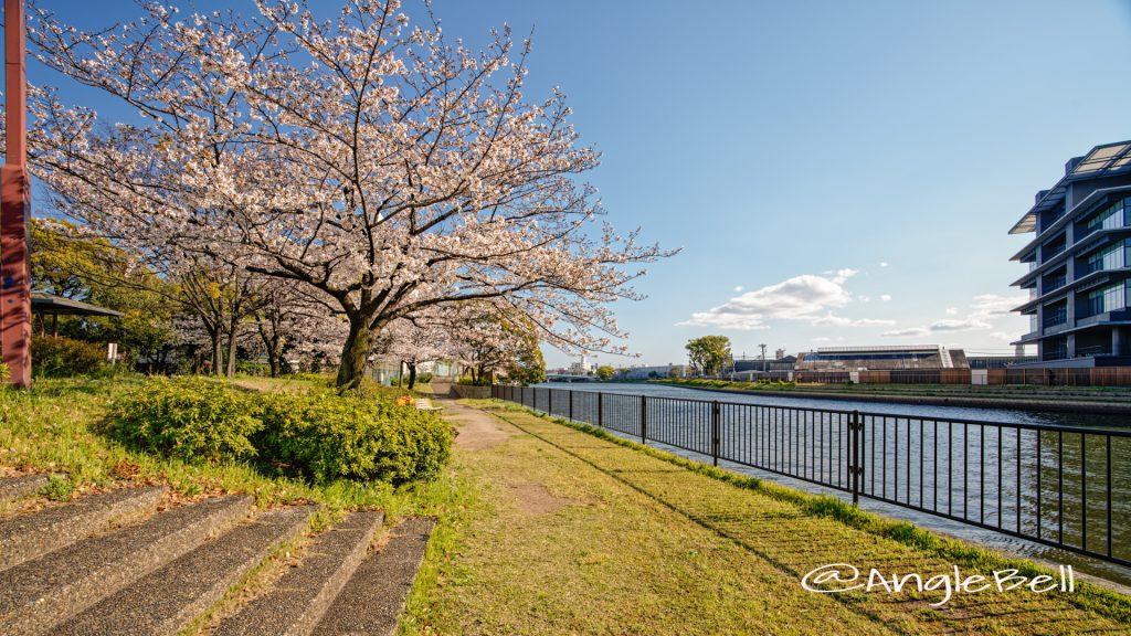 南堀川端公園 堀川沿いの公園 April 2020