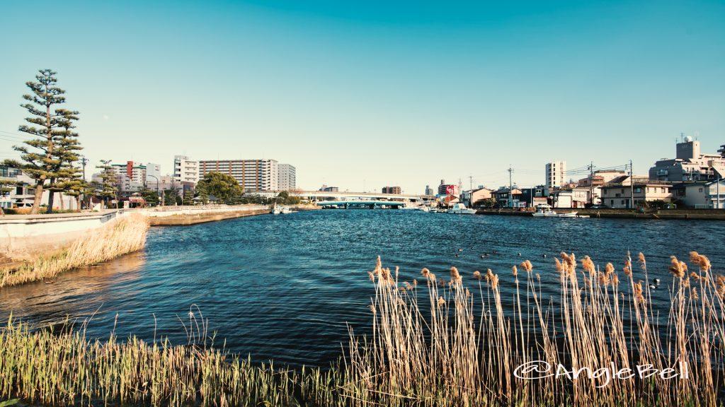 宮の渡し公園 新堀川と内田橋 April 2020