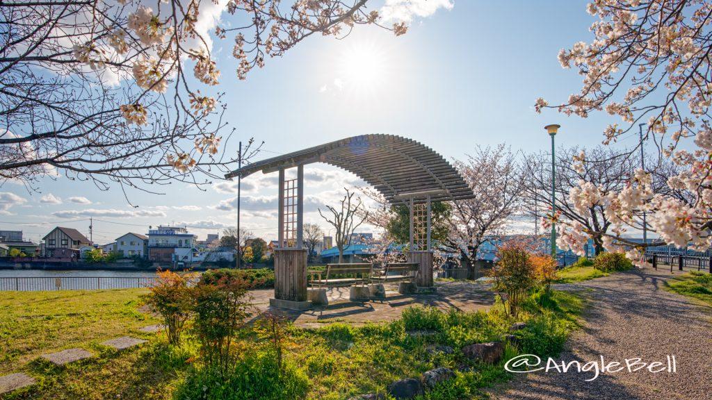 熱田区大瀬子町 大瀬子浜公園 April 2020