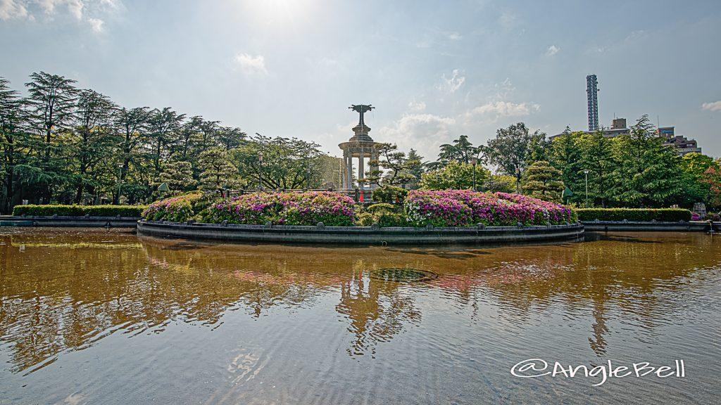 鶴舞公園 噴水塔とツツジ(躑躅) May 2020