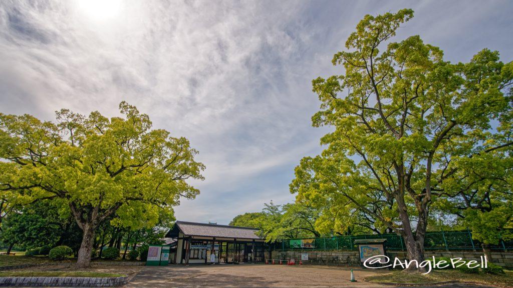 名古屋城 東門 May 2020