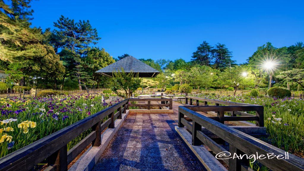 夜景 菖蒲池 (四阿) 鶴舞公園 May 2020