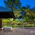夜景 四阿と菖蒲池 (鶴舞公園) May 2020