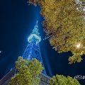 名古屋テレビ塔 (ブルーライトアップ) May 2020