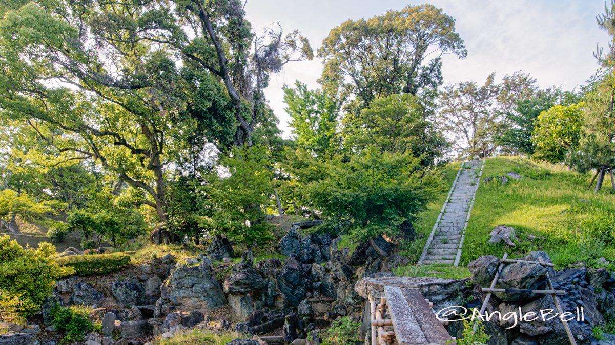 権現山 (名古屋城) June 2020