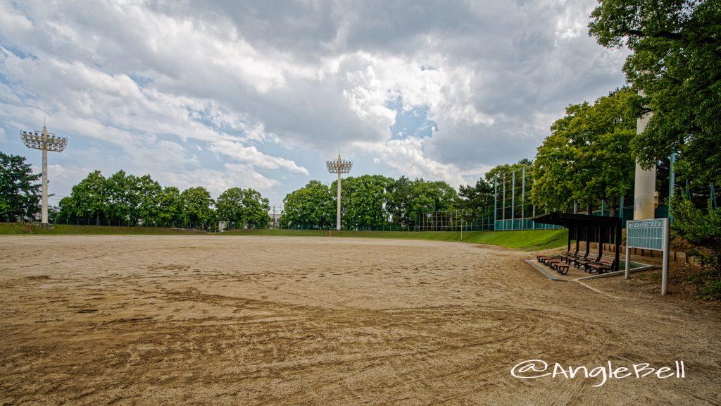 鶴舞公園野球場 June 2020