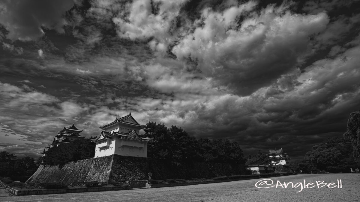 西南隅櫓と名古屋城 August 2020