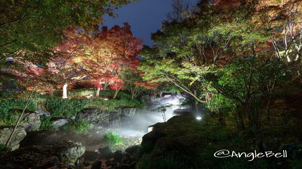 白鳥庭園 渓谷の景 ライトアップ2017