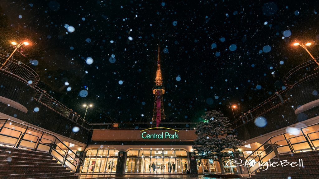 雪降る夜 もちの木広場から見る名古屋テレビ塔 January 2018