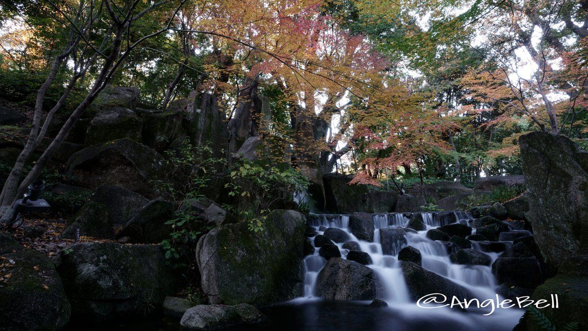 紅葉の候、大曽根の瀧 2017