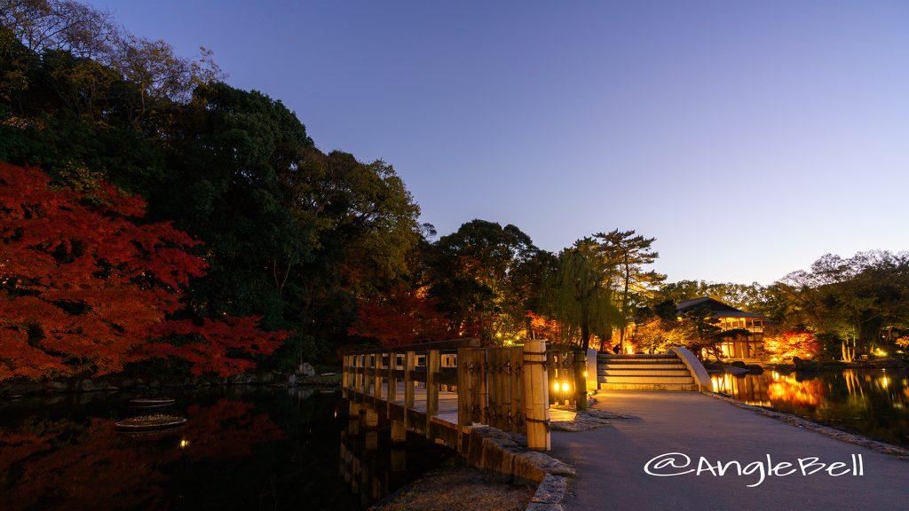 夕景 徳川園夜会 西湖堤 紅葉ライトアップ2017