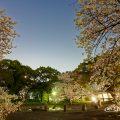 夜景 名城公園彫刻の庭 水広場 March 2018