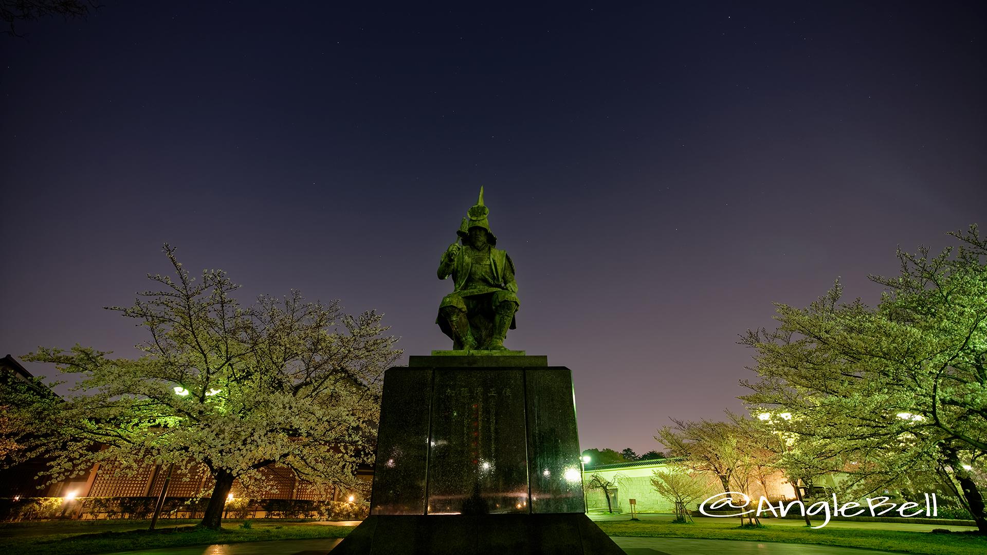 夜景 名城公園 加藤清正像と桜 March 2018
