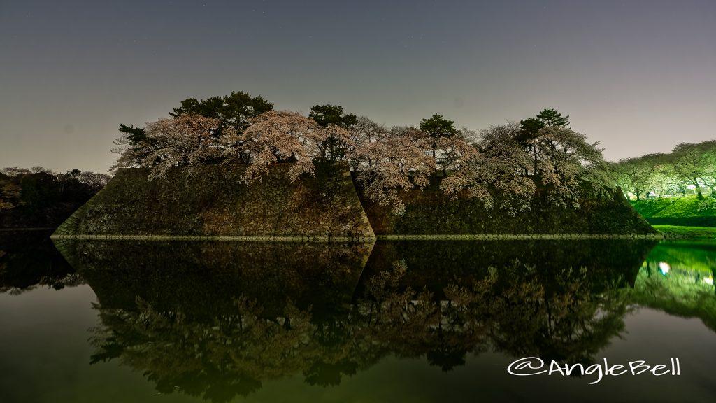 夜景 名古屋城 城西 外堀の石垣 桜と水景 March 2018