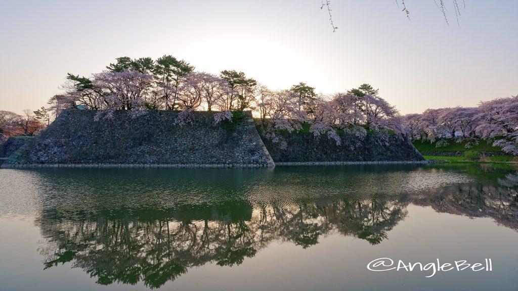 早朝 名古屋城 城西 外堀の石垣 桜と水景 March 2018