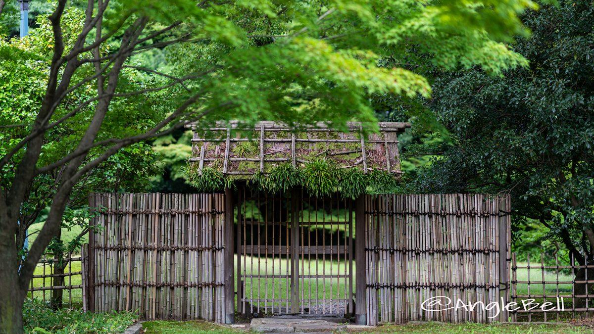名古屋城 三の丸庭園