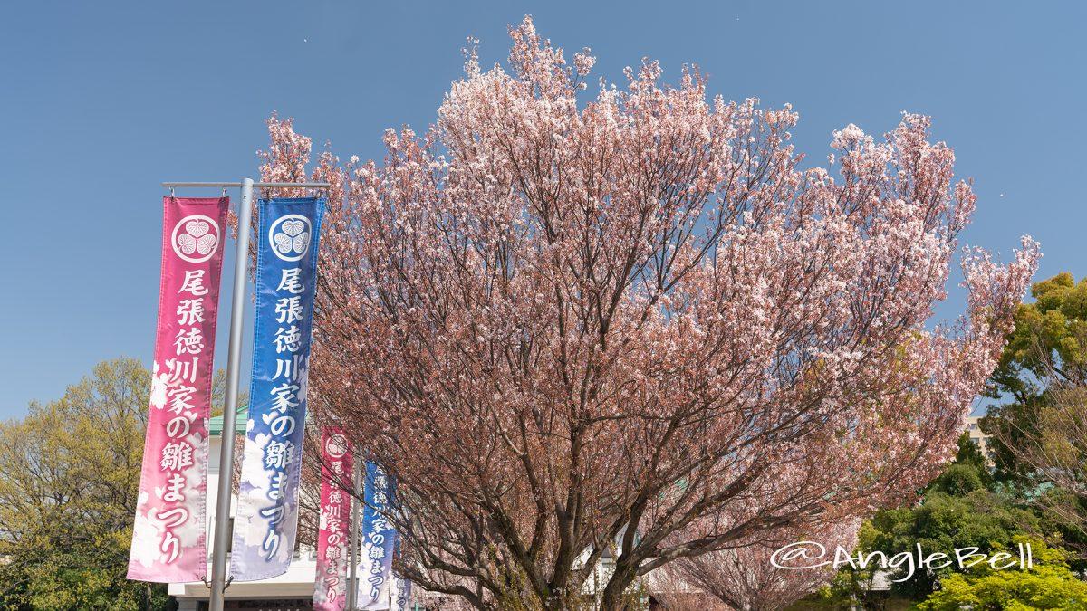 徳川美術館 尾張徳川家の雛まつり2019