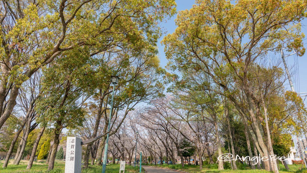 名古屋市北区 志賀公園