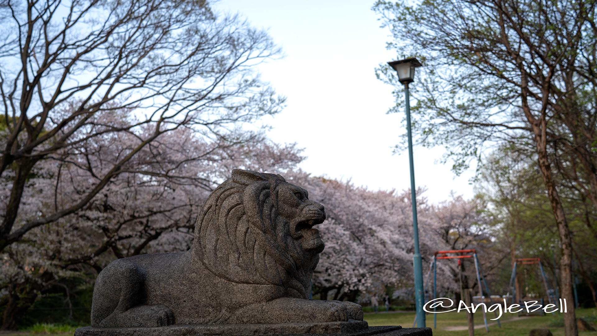ライオン像 名城公園 ライオンヘルスパーク 桜,2019