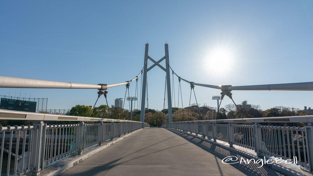 堀川 橋梁 熱田記念橋 (白鳥公園)