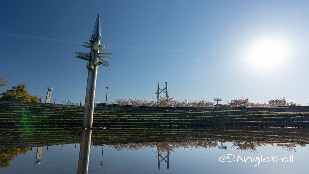 白鳥公園 橋詰広場 桜風景