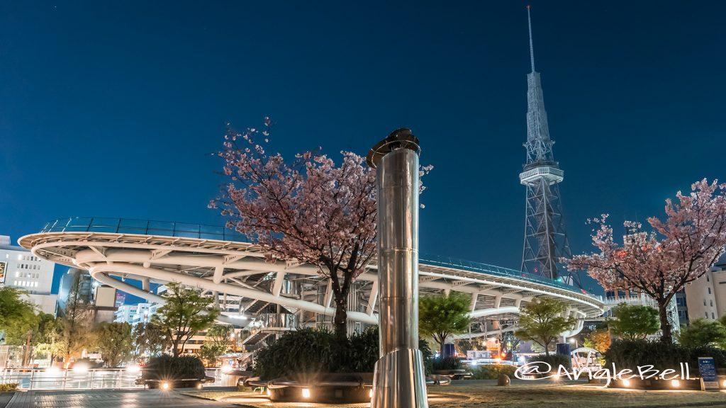 夜景 オアシス21 名古屋テレビ塔 八重桜 2019