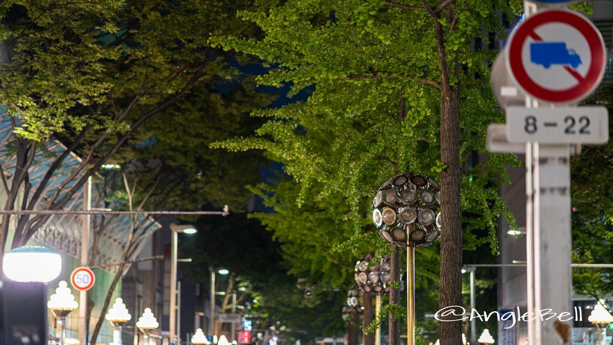 栄広小路通り 街灯